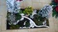 jardin-d-hiver